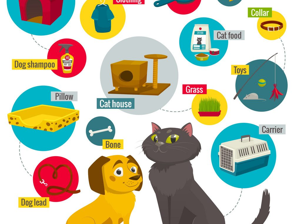 cat and dog care items pet shop infographics vector 8107004 1000x760 - Evcil Hayvan Ürünleri