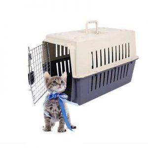 kedi kafesi 2