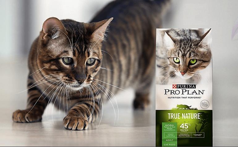 proplan kedi maması